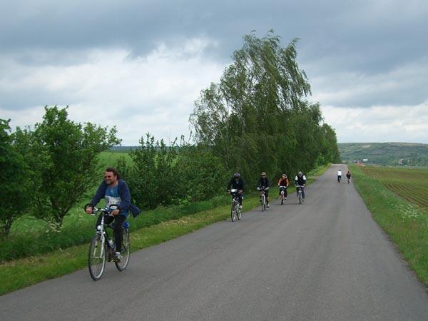 Radweg vom Karsdorf nach Burgscheidungen